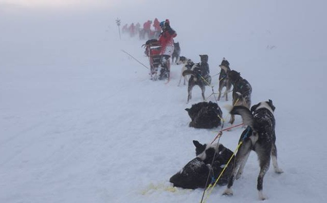 The Atte HUSKYteers tackle a mountain plateau heading towards Kiruna, Sweden, in a whiteout at -20c and 30mph winds.