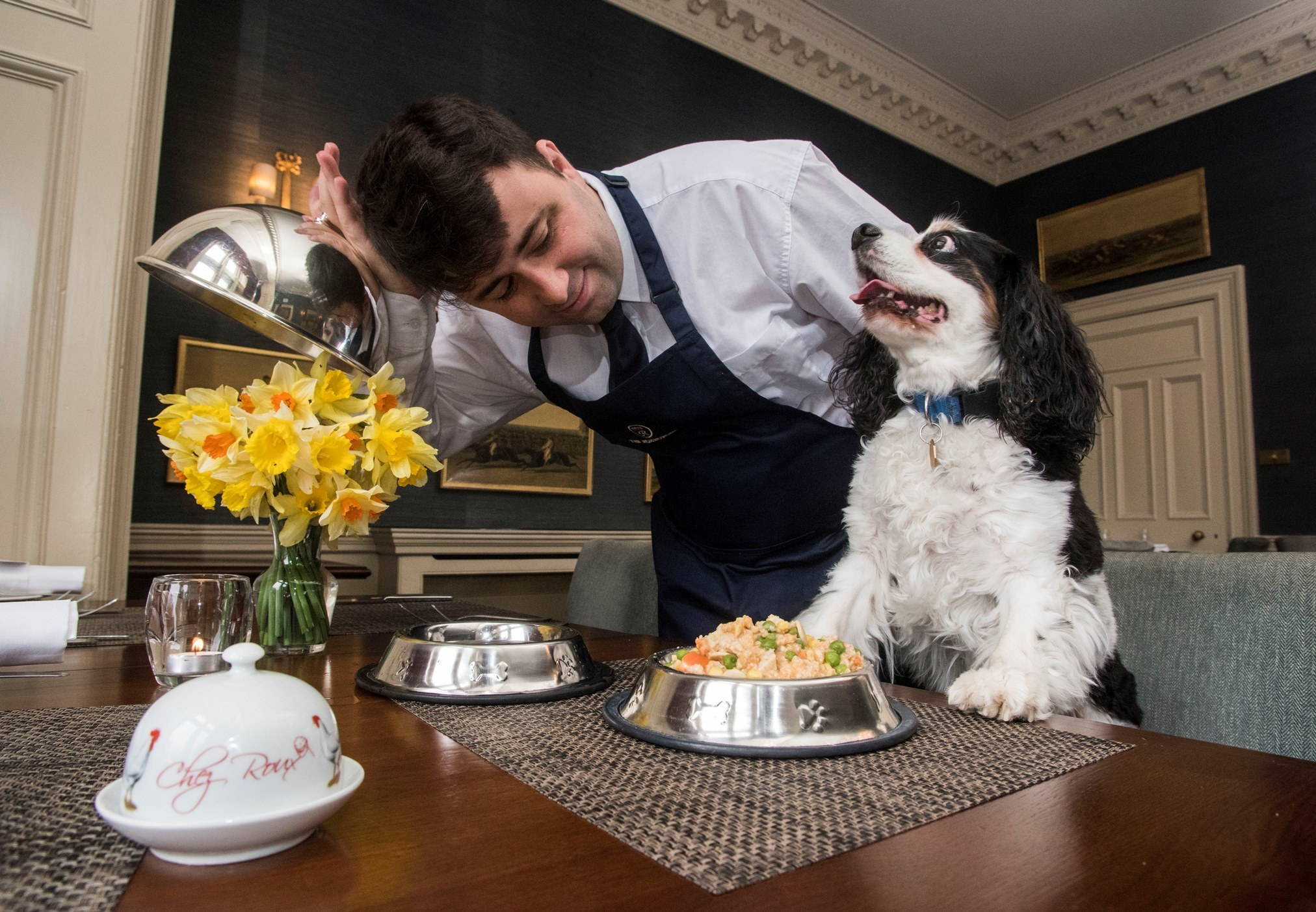 Dog's dinners will be served at Cromlix
