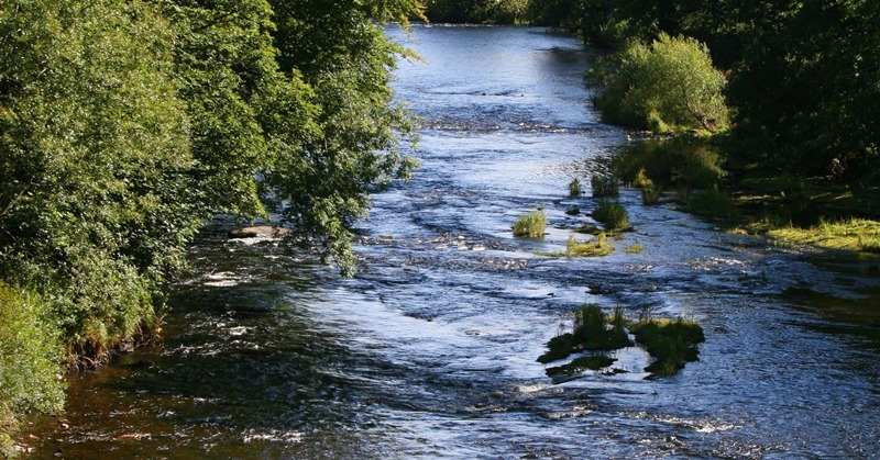 Pic shows the South Esk river in sunshine.