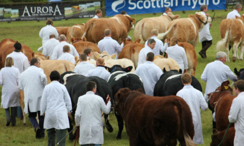 Richard Lochhead wants all Scotland's agricultural shows to cater with local produce