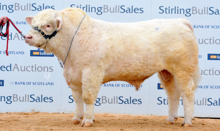 Lochend Hickory from the Millars, Port of Menteith, sold for 22,000 gns.