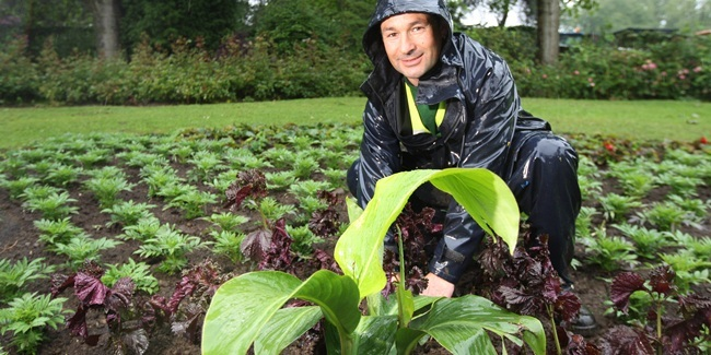 Glenrothes drugs raid digs up stolen plants - The Courier