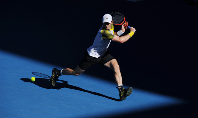 Andy Murray has not dropped a set on his route into the last four.