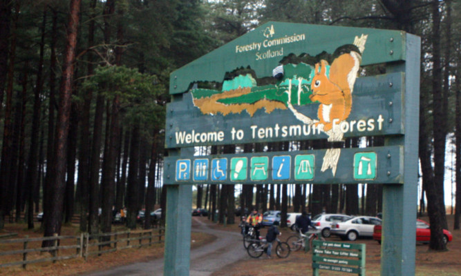 Complaints over behaviour of visitors to Tentsmuir Nature Reserve.