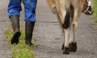 The Better Together campaign is urging farmers to back the union.