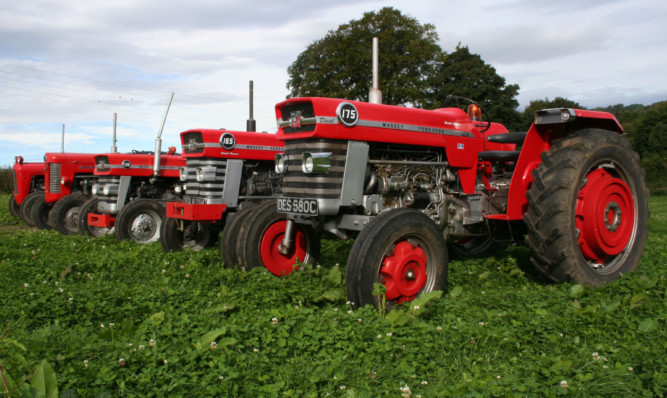 The three most popular models in the original Red Giants range  the 175, the 165 and the 135 are joined by the models from the old range they replaced, the MF 35 and 65.