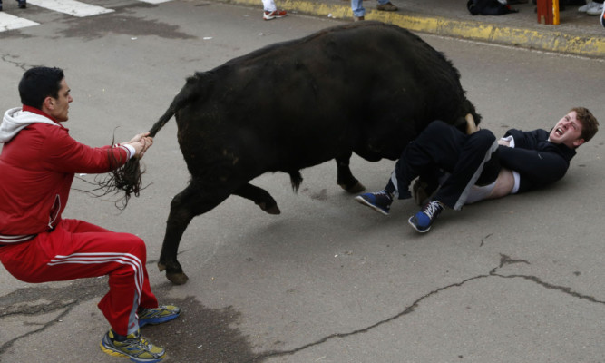 "Benjamin Miller is gored by a bull during the ""Carnaval del Toro"" in Ciudad Rodrigo, Spain."