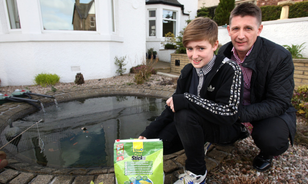 An otter has been blamed for the deaths of koi carp belonging to Colin and Jack Low.