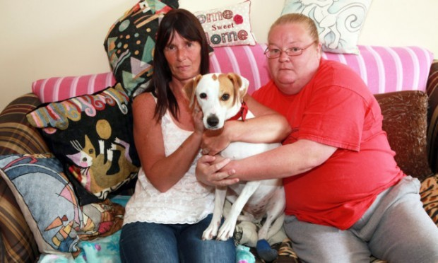 From left:, Doreen Robertson, Maizi the dog, Kirsten Oostindie (Maizi's owner).