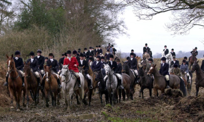 Fox hunting has become an unexpected issue for the SNPs group in Parliament.