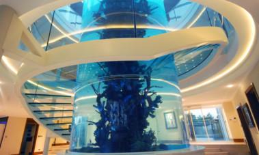 Businessman says shattered fish tank at Gleneagles mansion has left