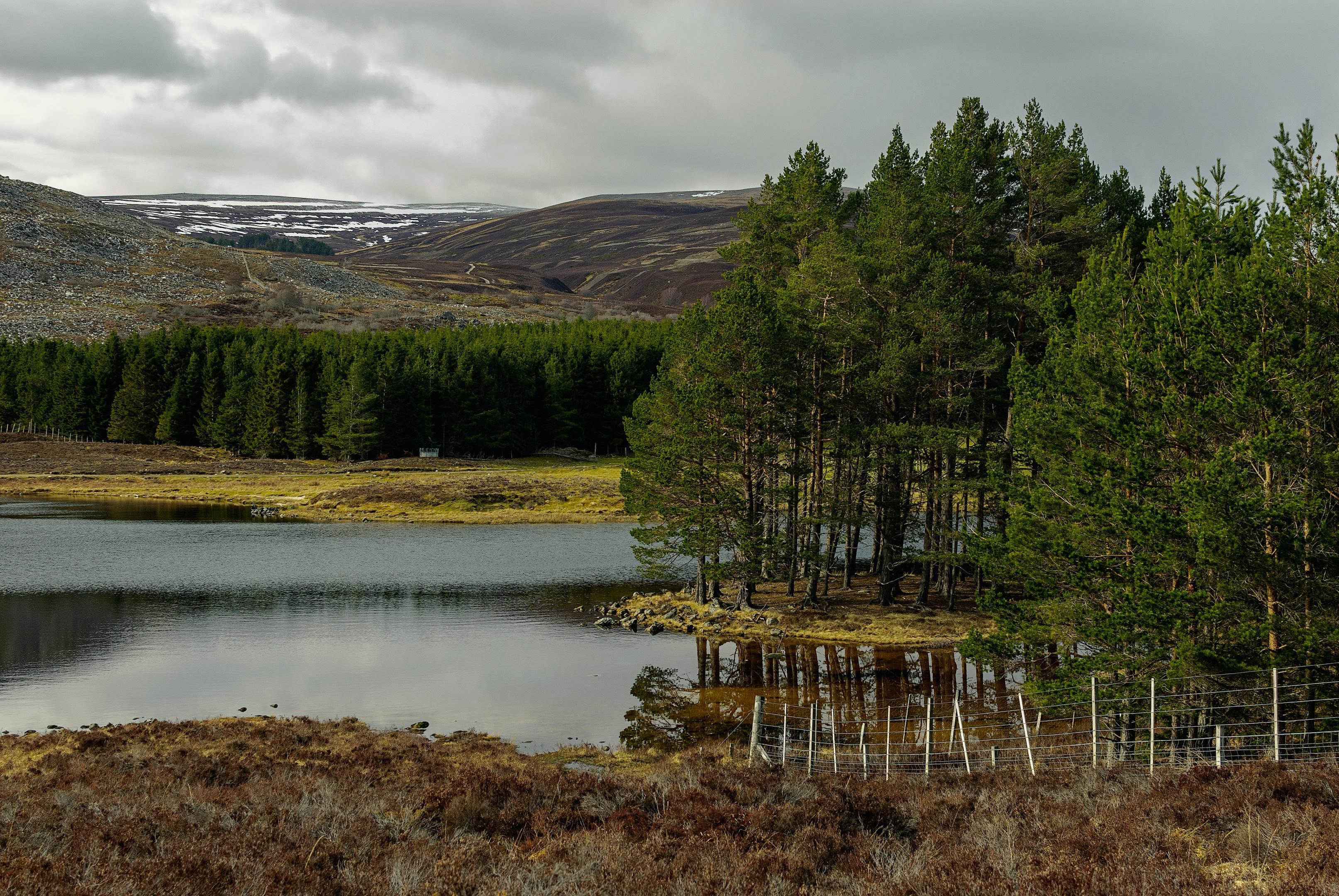 Stunning Cairngorm scenery.