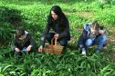 Gayle picking wild garlic with Robbie and Ellie Towns.