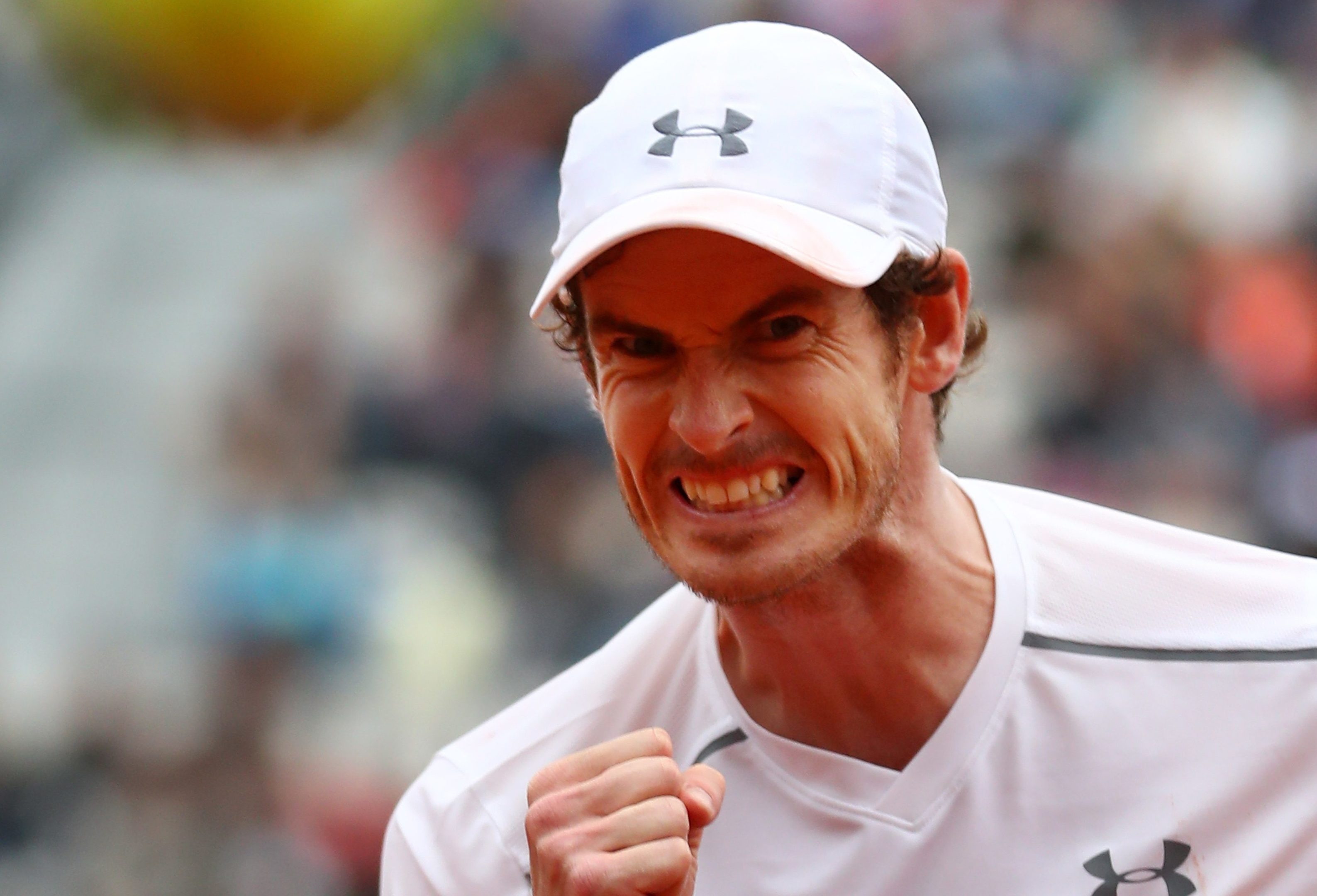Andy Murray celebrates on his way to victory.