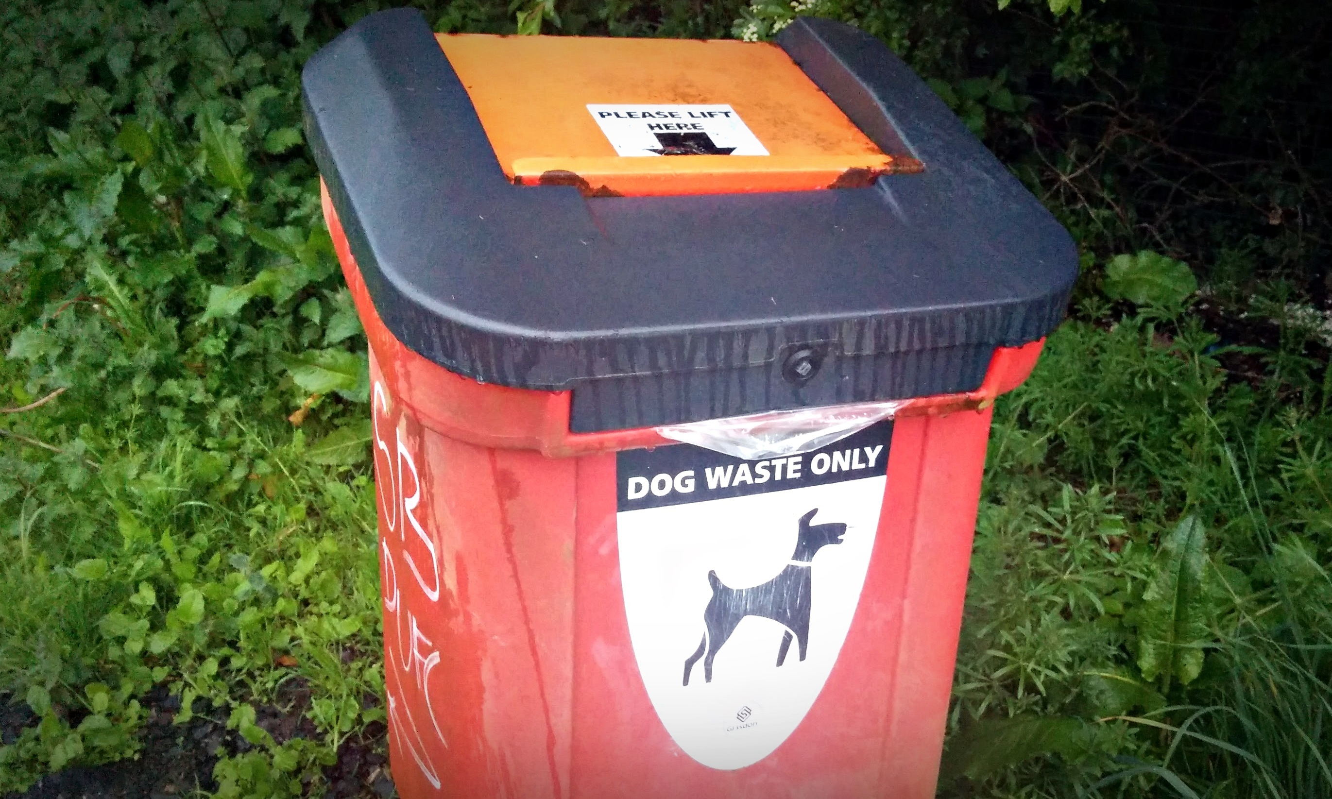 Community groups waging the war on litter have already uplifted over 300 dog faeces since January.