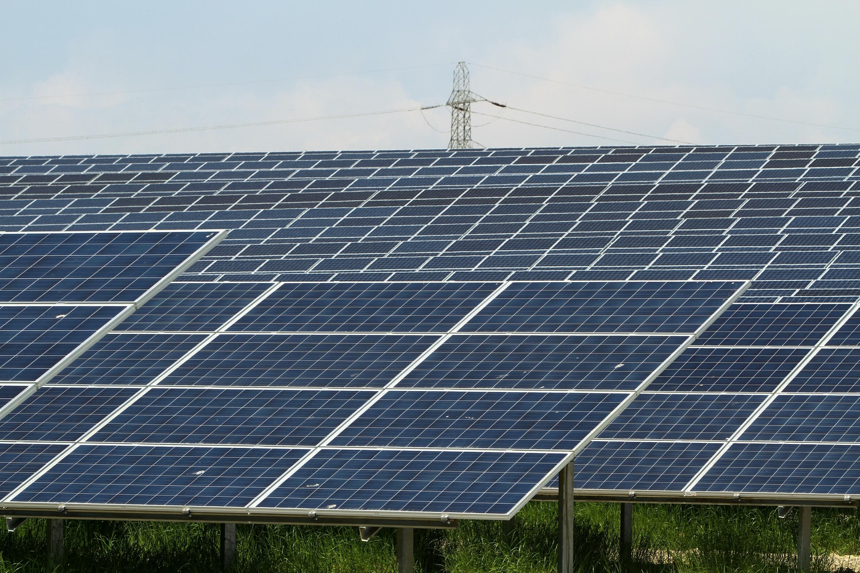 Scotland s largest solar farm on errol estate officially for Solar ranch