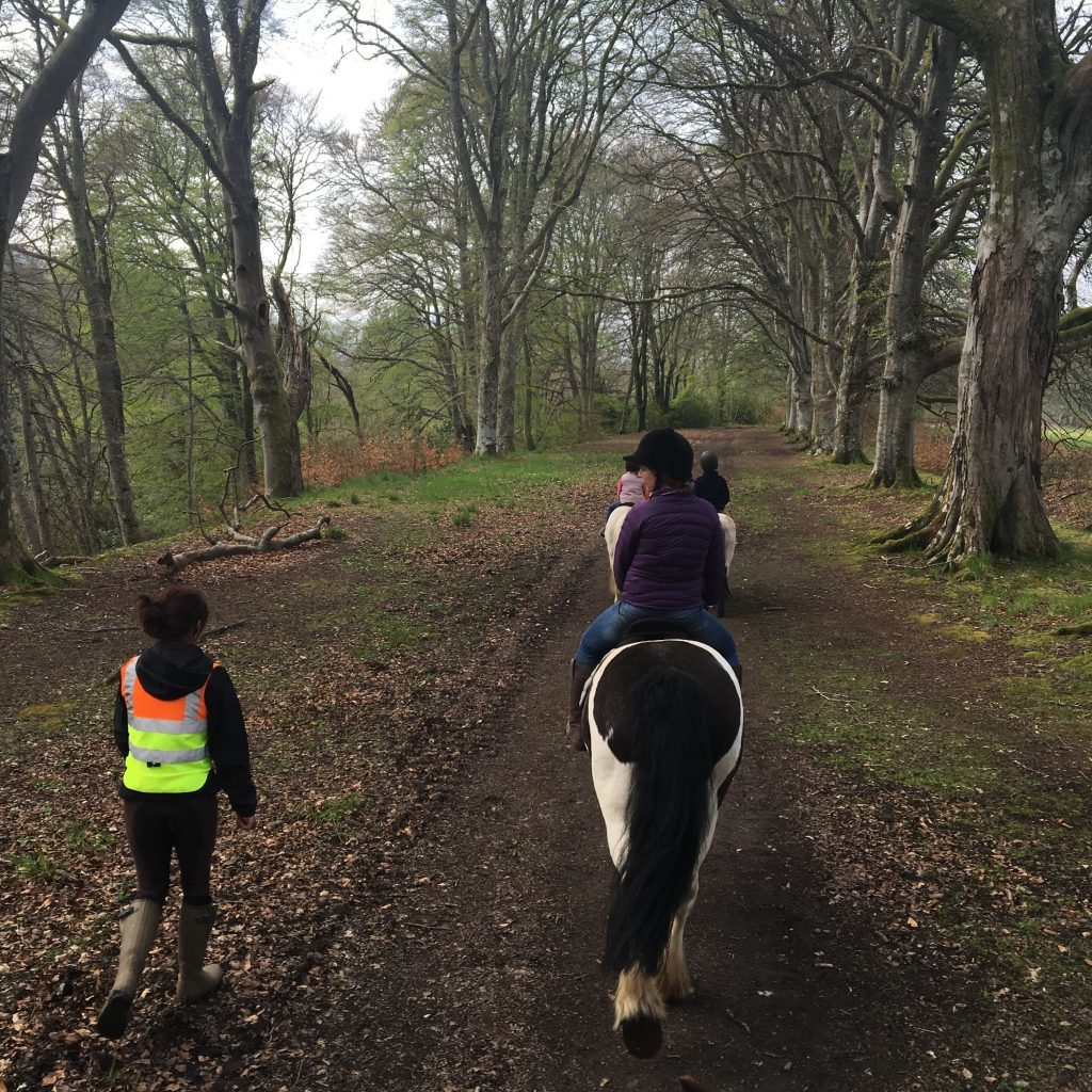 Trekking along the banks of the River Tay
