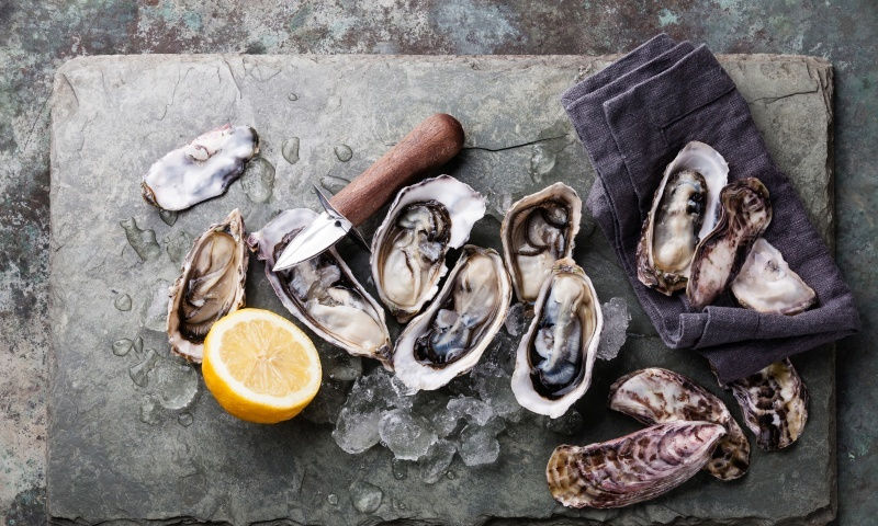 Oysters - not everyone's cup of tea.