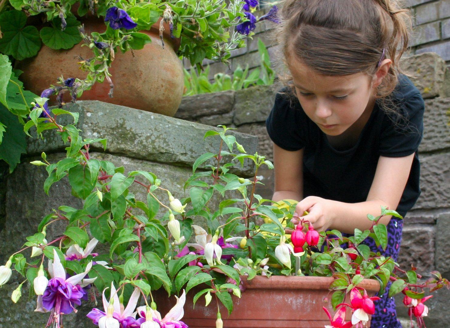 Sophie weeding the flower tubs