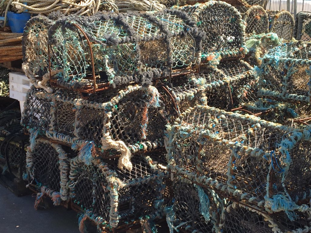 Creels at Pittenweem Harbour