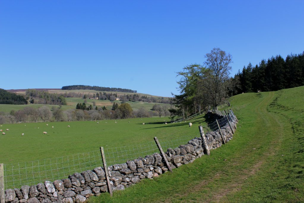 4 - Strathardle from the Cateran Trail - James Carron, Take a Hike