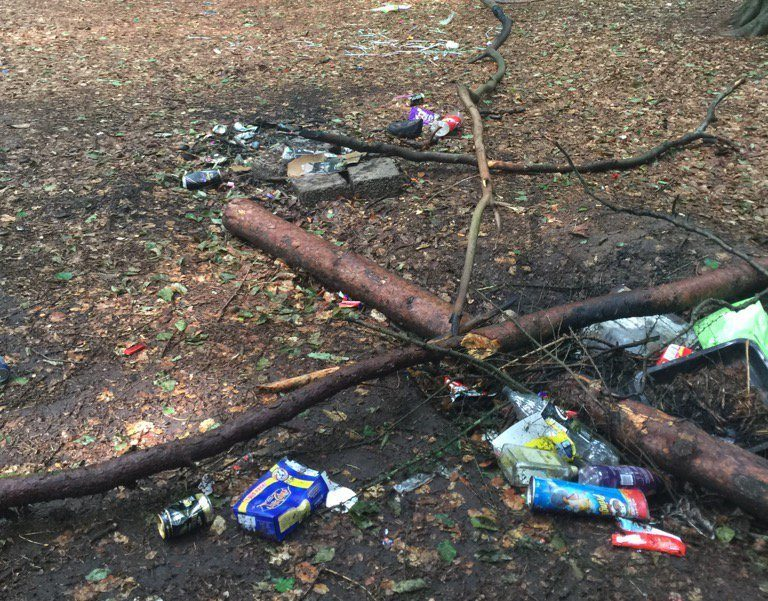 Some of the trash left in the woods