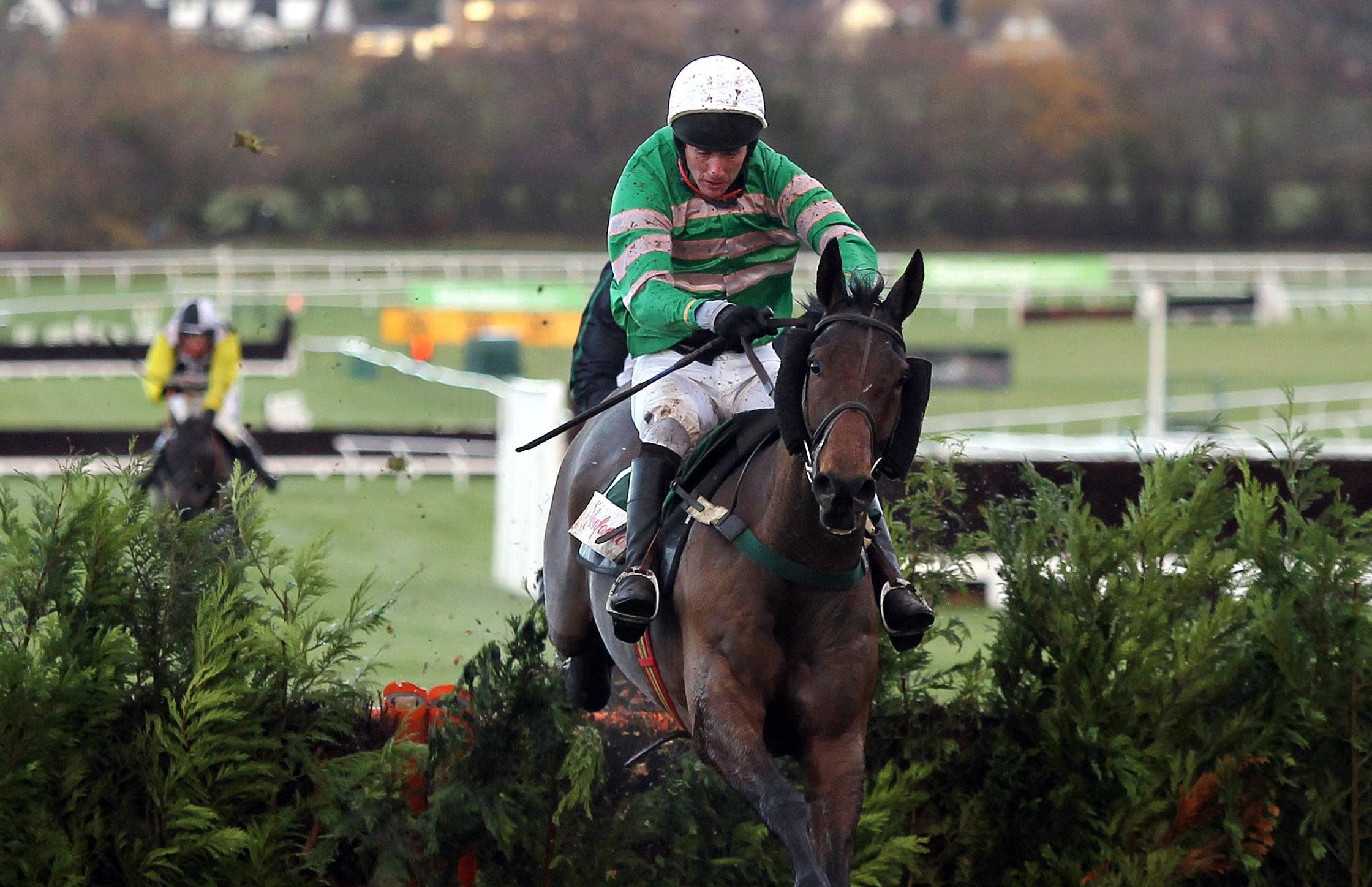 JT McNamara on Garde Champetre at Cheltenham Racecourse in 2011.