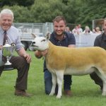 Sheep breeds to the fore at Braco