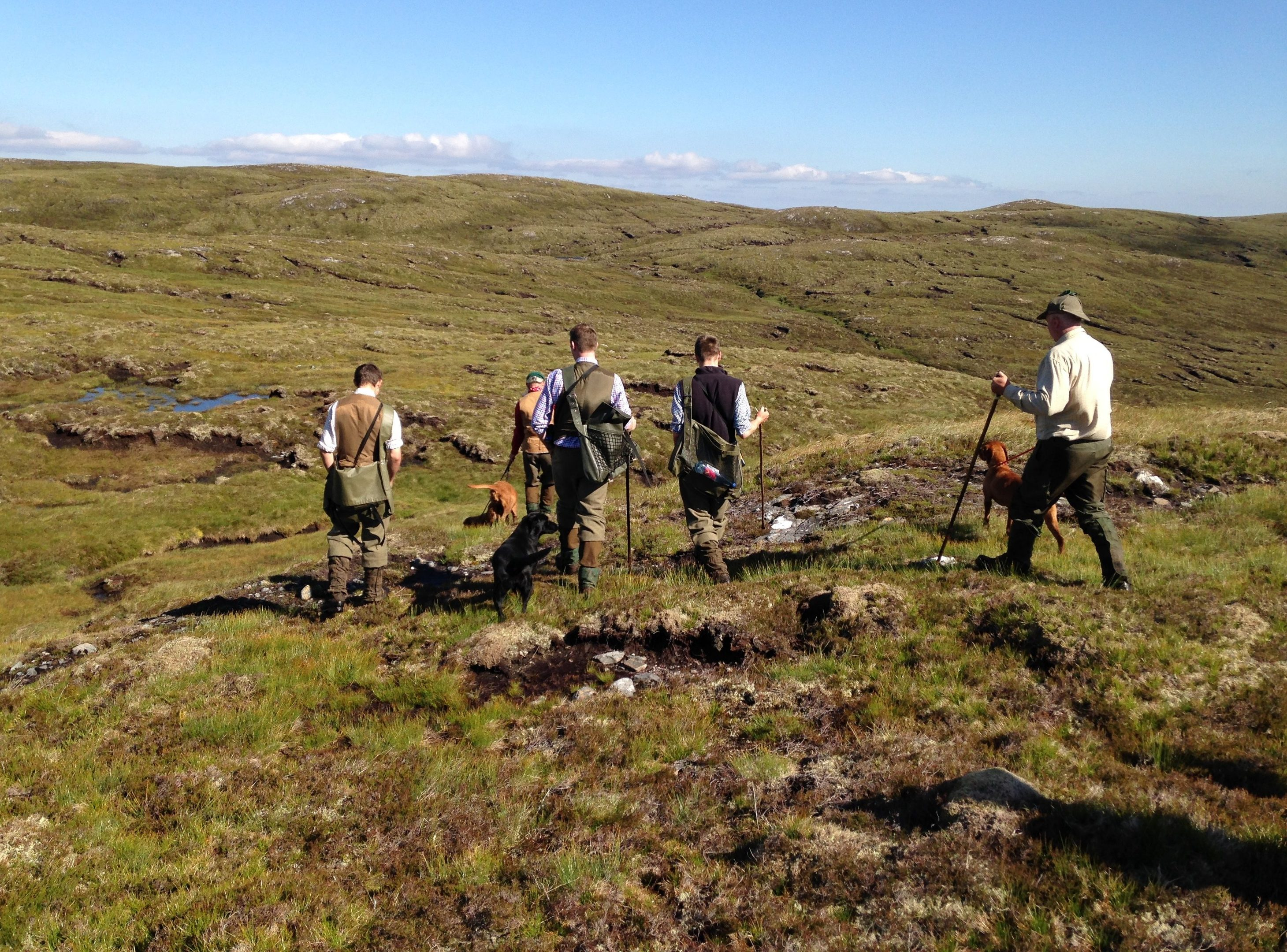 A grouse shoot.