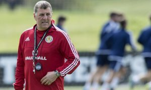 Mark McGhee insists Scotland manager Gordon Strachan is desperate to stay in charge