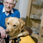 Dementia dog scheme seeking couples in project's second phase