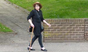 "Vigilante Fife woman caused £2800 damage to car in ""cat killer"" vandalism spree"