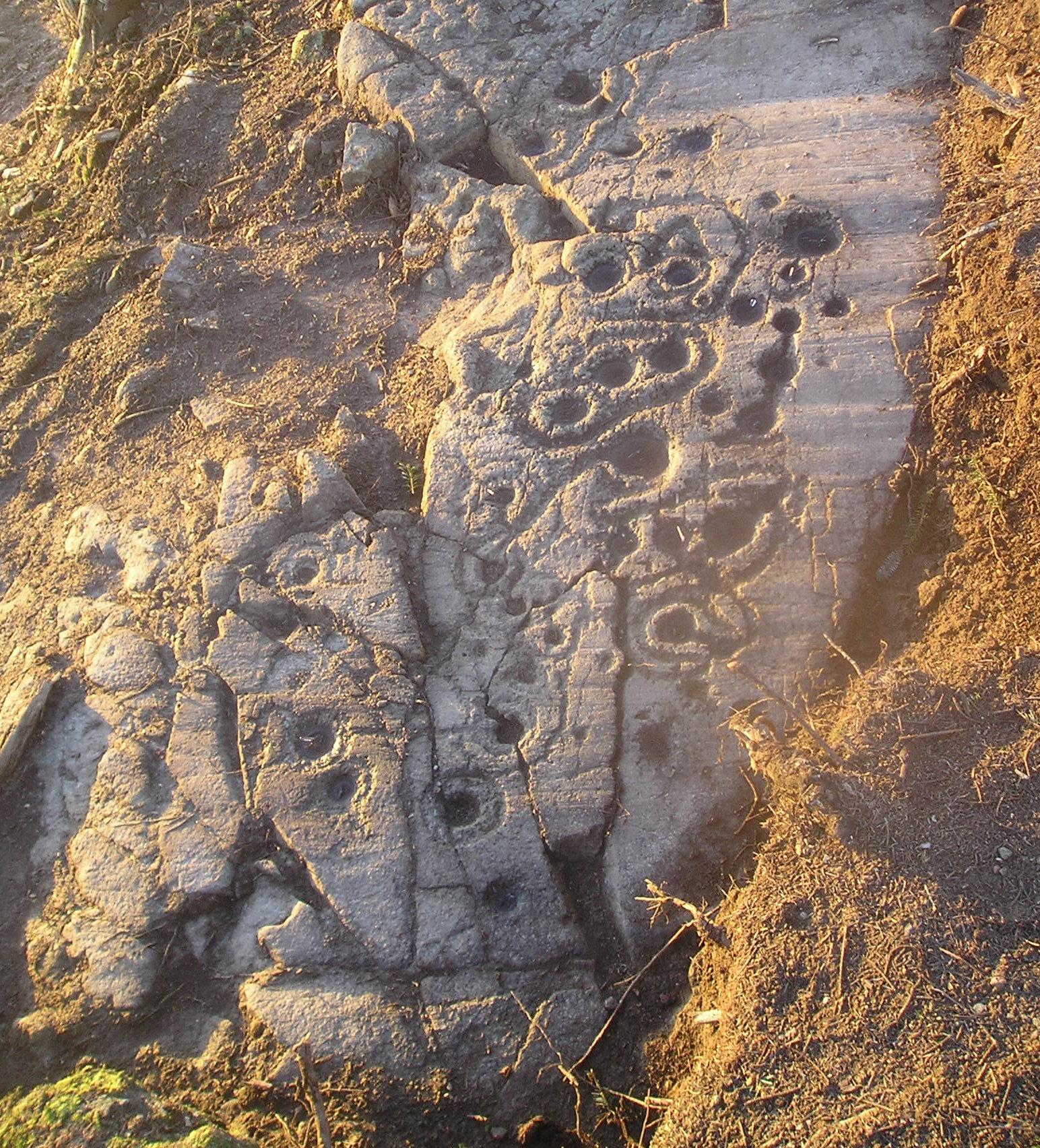 Discovered in Lurgan, near Aberfeldy