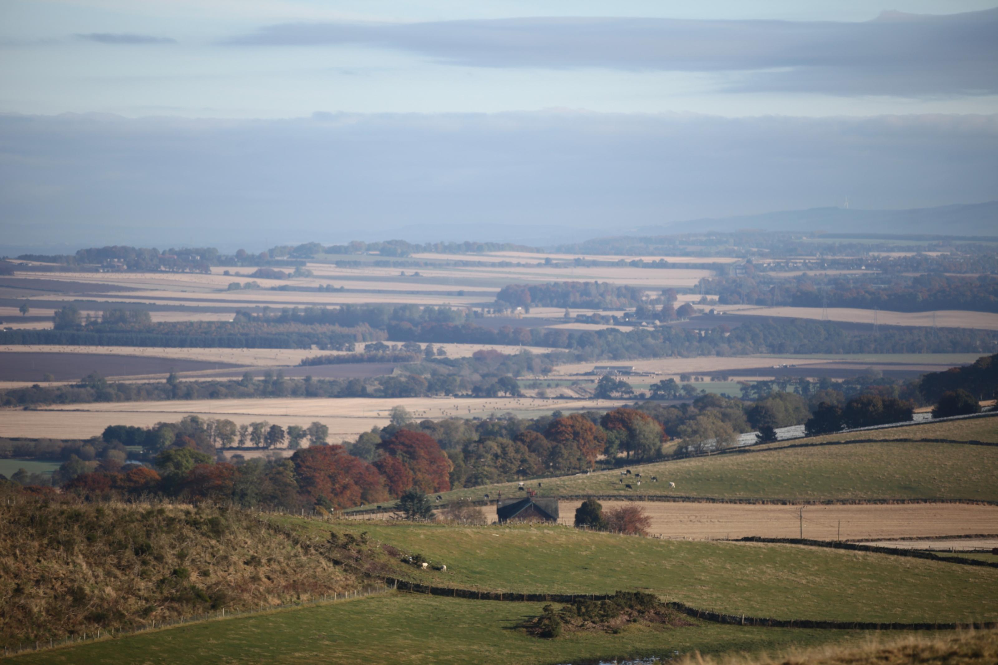 Angus - a patchwork landscape.