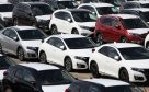 A fleet of new cars arrive at Southampton Docks