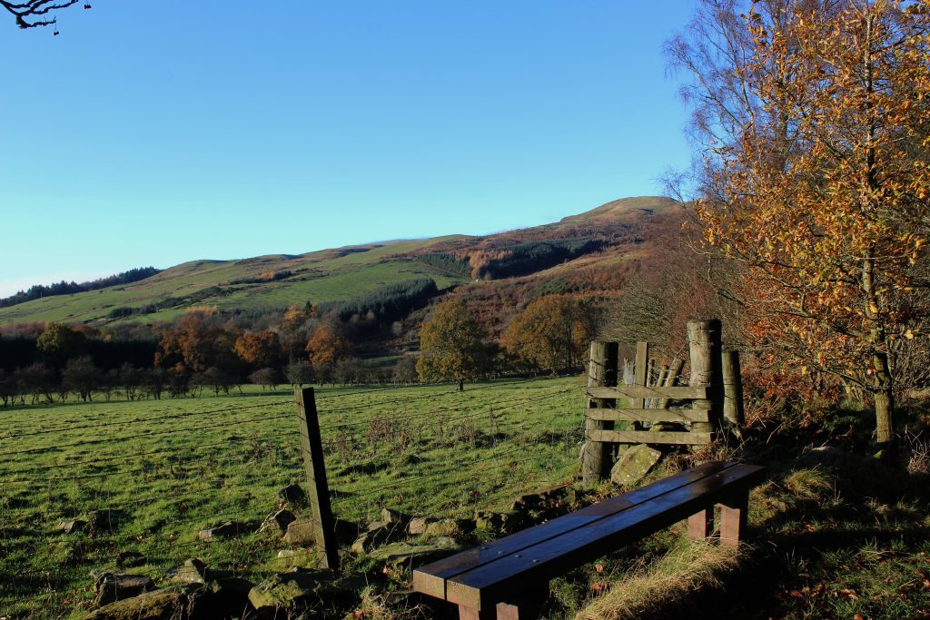 2-bench-with-a-view-in-harran-hill-wood-james-carron-take-a-hike