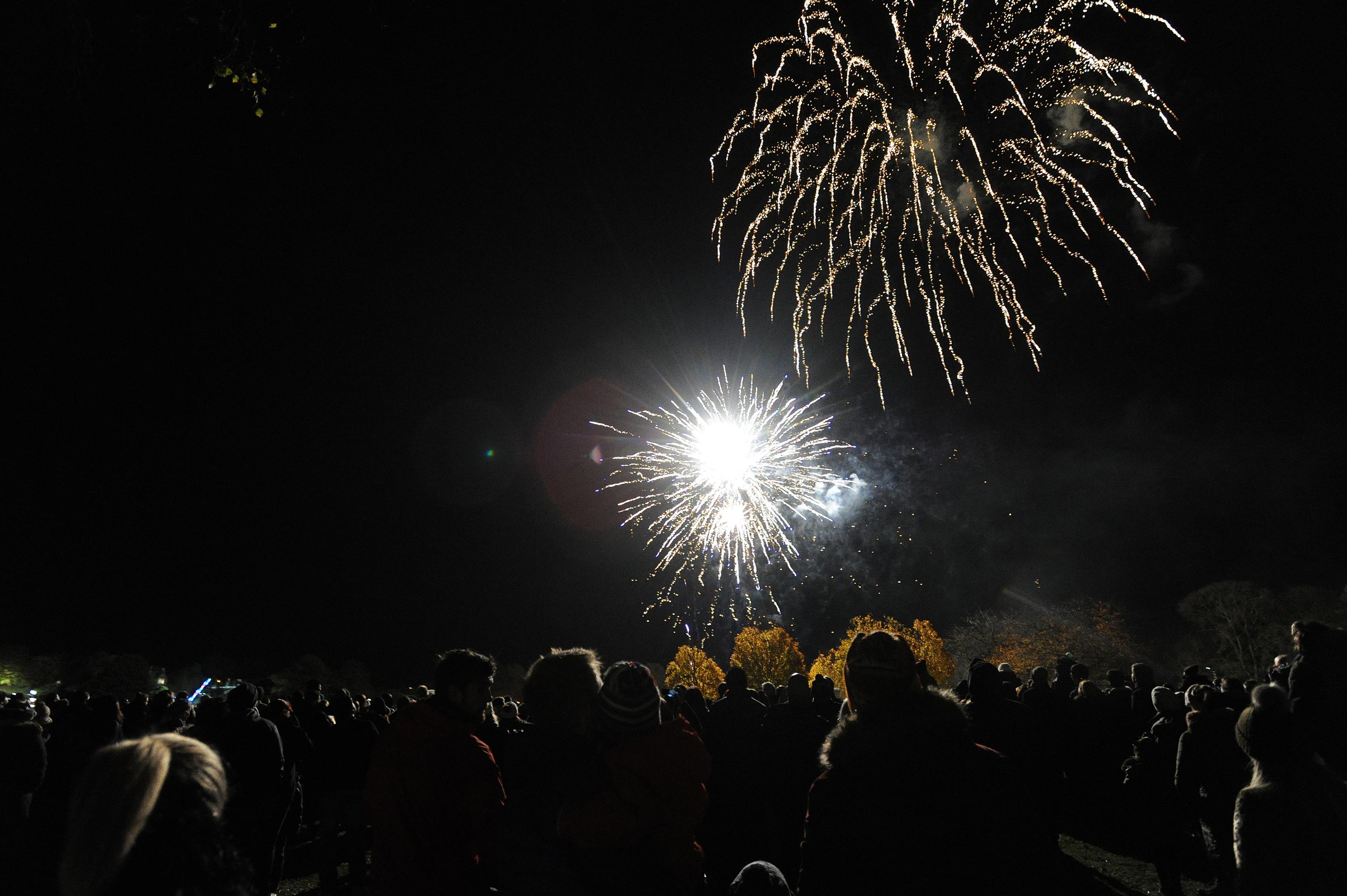 The fireworks display at Baxter Park.