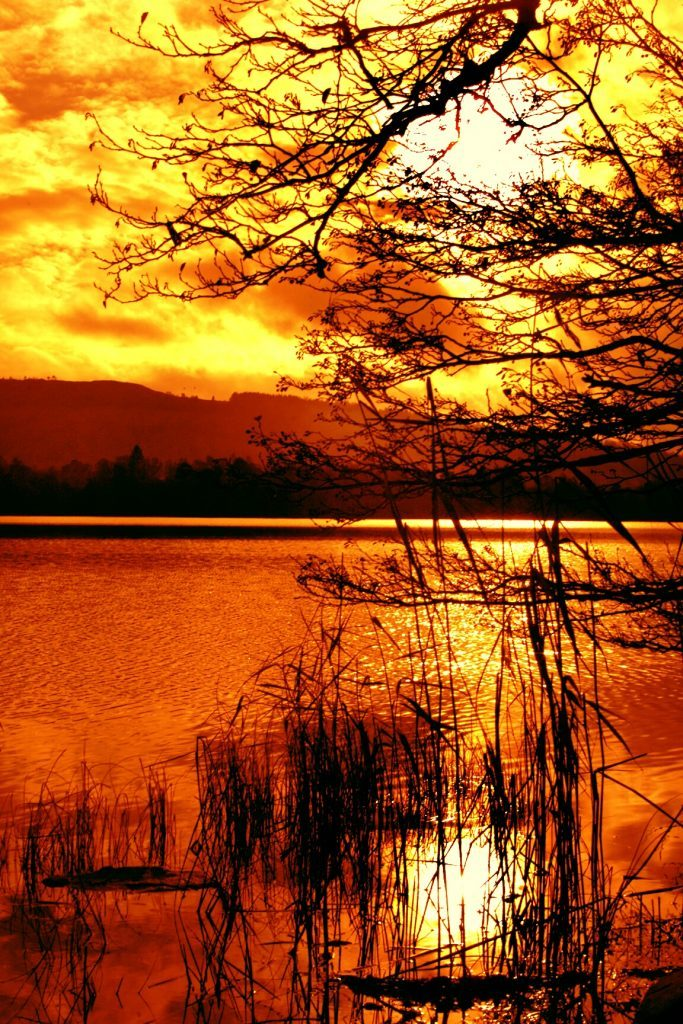 Marlee Loch in Perthshire, 2012