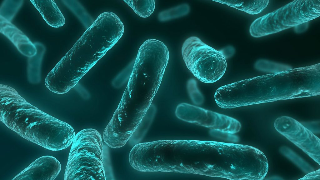 Bacteria are becoming increasingly resistant to antibiotics