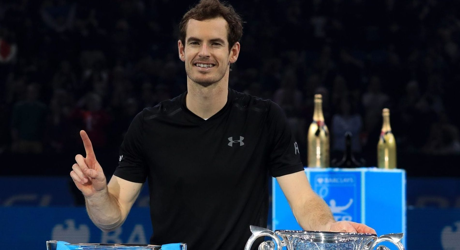 Andy Murray has reached the top of tennis in 2016.