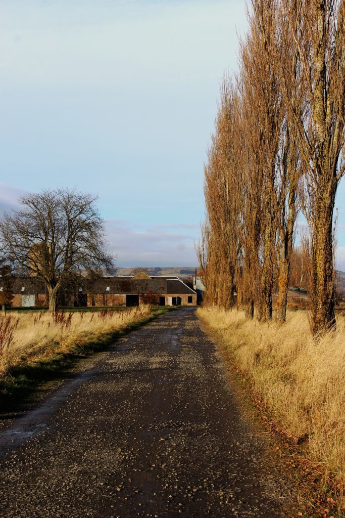 2-new-farm-near-errol-james-carron-take-a-hike