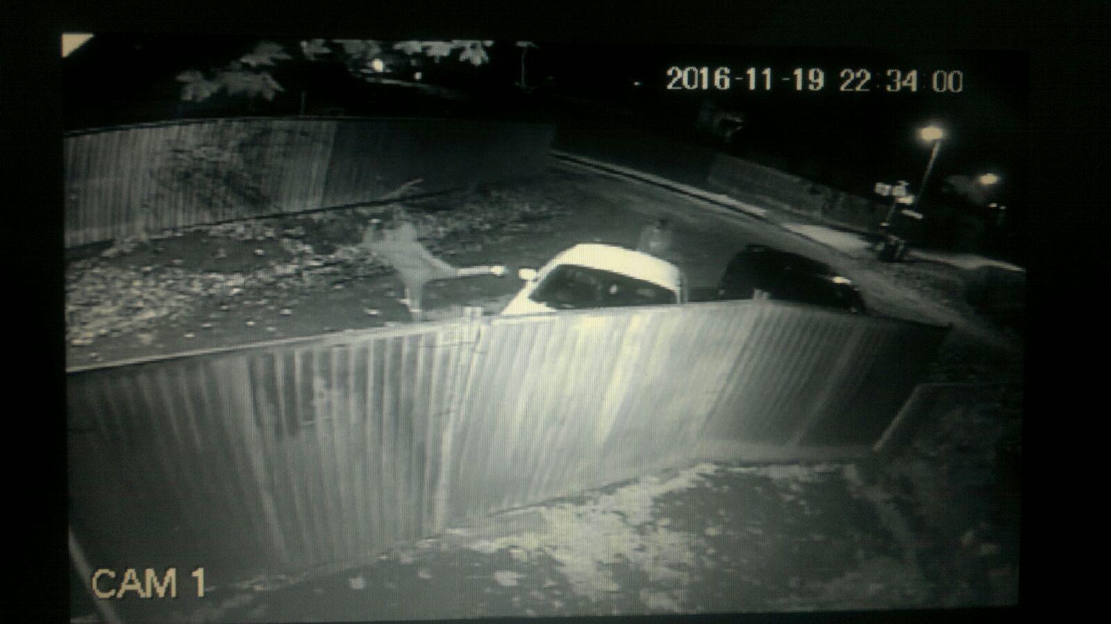 CCTV footage of people at the caravan owner's cars at 10.34pm.