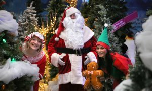 Christmas grotto magic with Santa and his little helpers