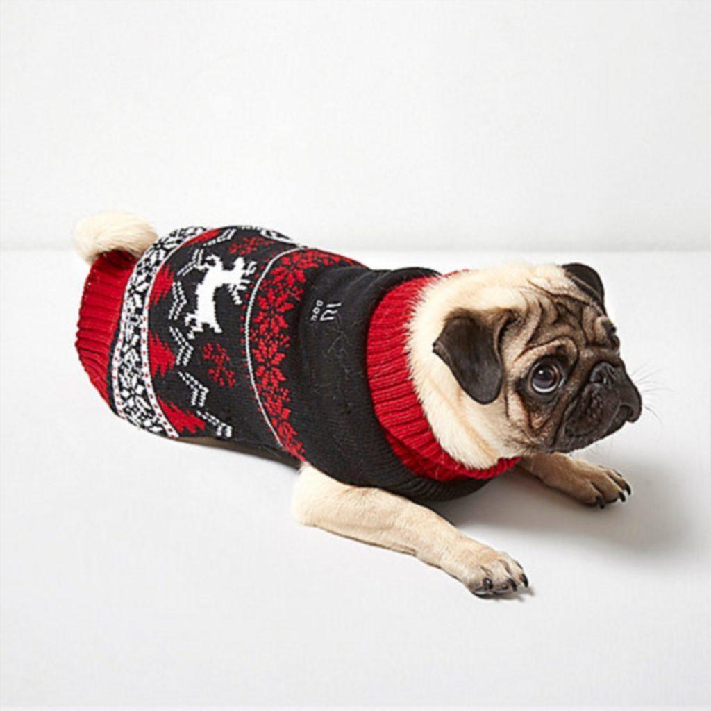 RI Dog red Christmas knit jumper, £16.