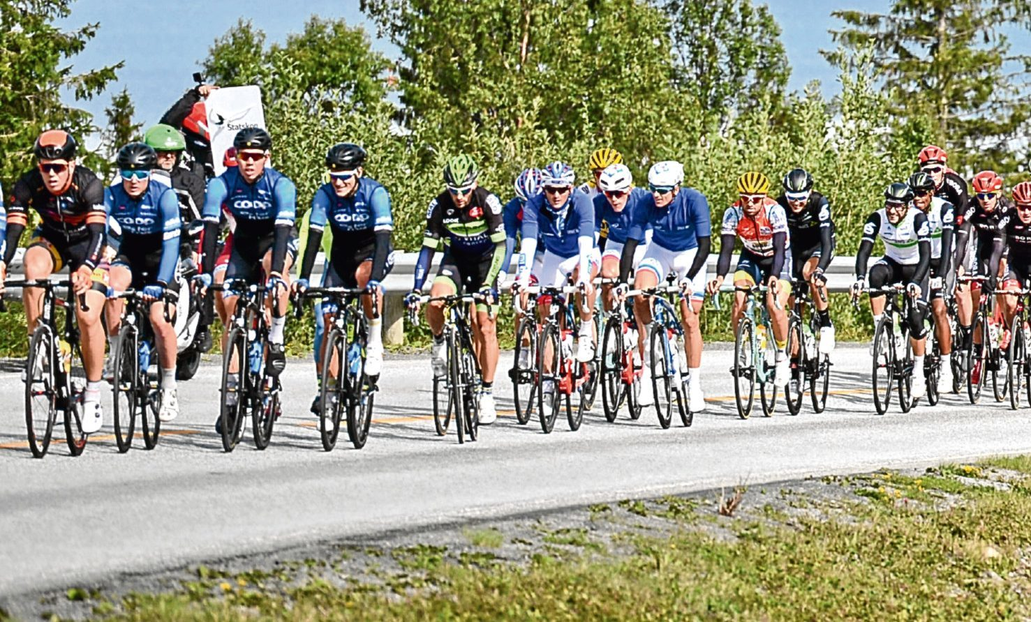 Club cyclists take part in a road race.