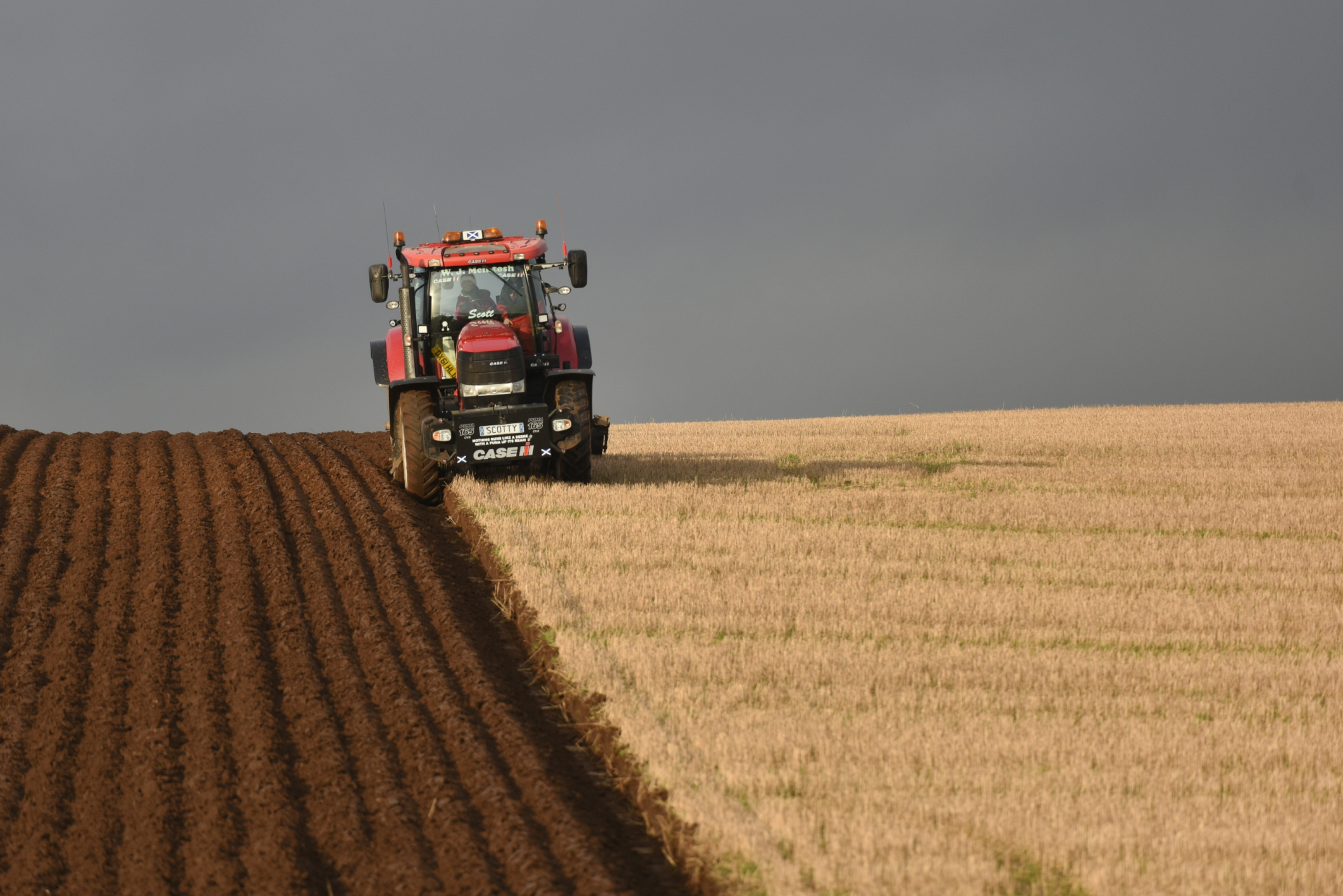Gayle ploughing a strip of land near Coupar Angus under the watchful eye of Scott McIntosh.