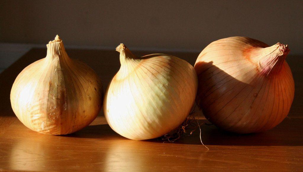 Onion globo
