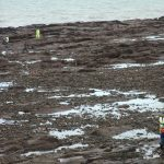 Search after teenager falls from Arbroath cliffs