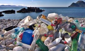 Plastic bottles are a major source of beach pollution