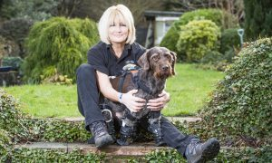 Fife pet becomes UK's first bionic dog